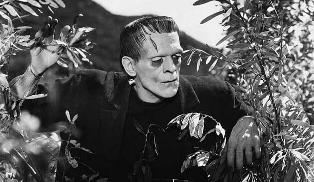 Boris-Karloff-in-Frankenstein-1931.jpg